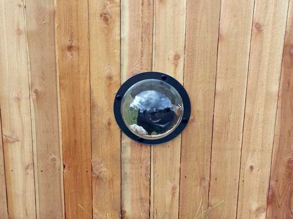Porthole in wood fence allows dog to see out while maintaining privacy