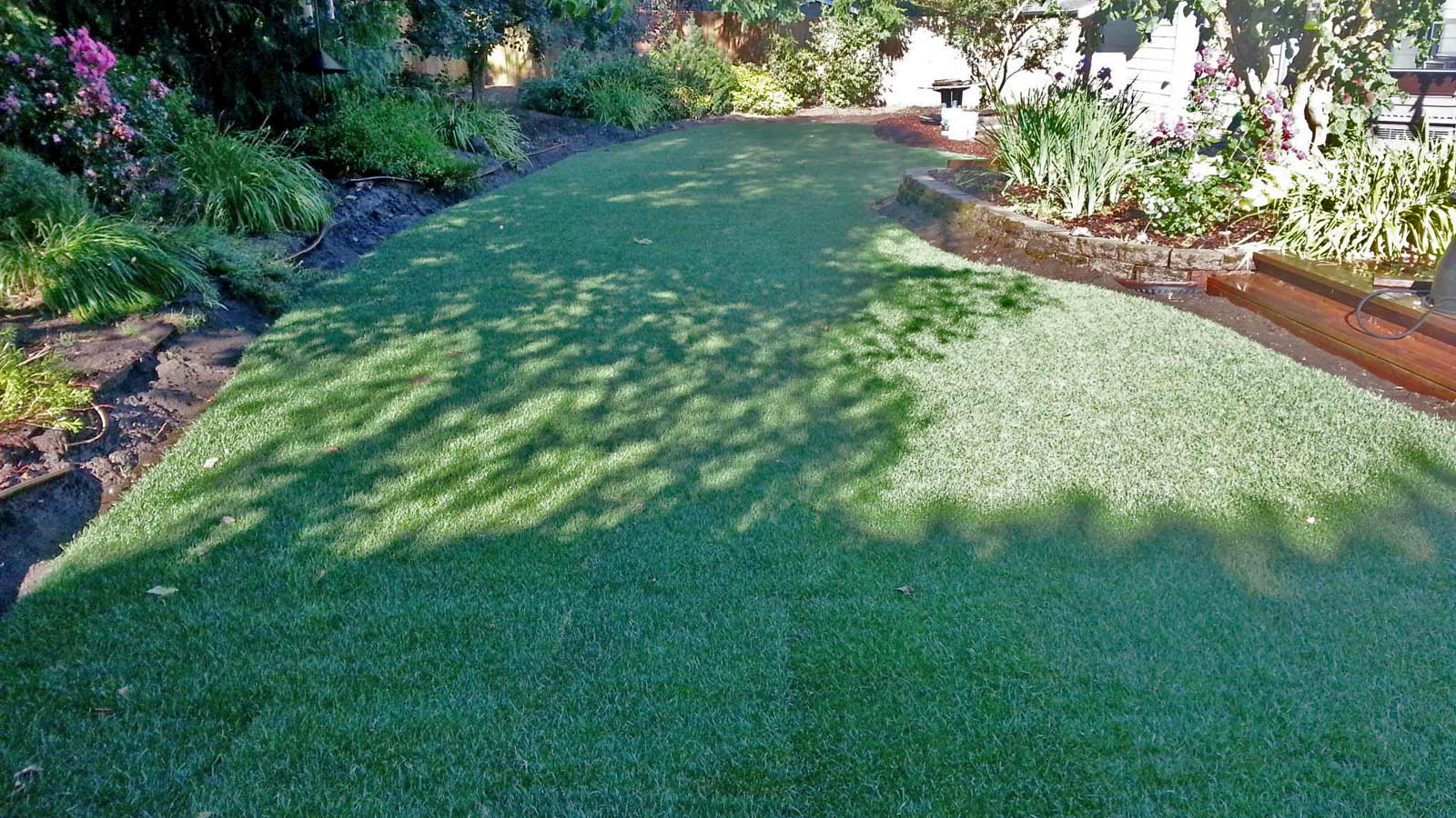 Tumwater backyard transformed by a new sod lawn professionally installed by AJB Landscaping & Fence