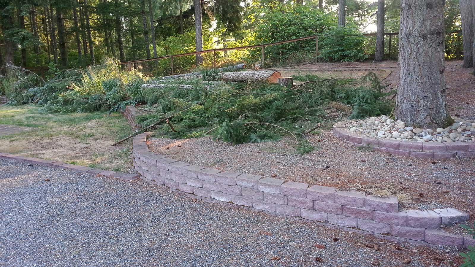 complete backyard landscaping overhaul in east olympia ajb