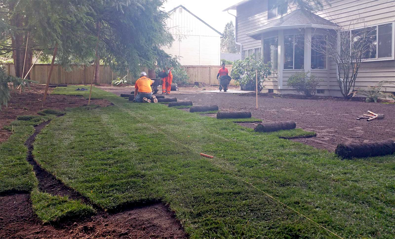 sod installation in olympia ajb landscaping u0026 fence